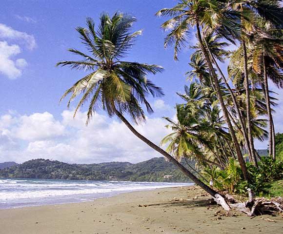 Beach in Tobago