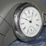 Macro Fob Watch