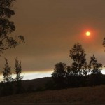 Red Bushfire Sun January 2003