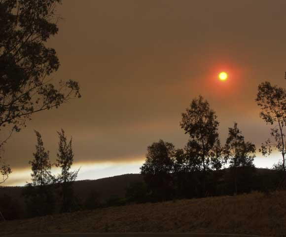 Red Bushfire Sun January 2003