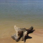 On the Shores of Lake Hume, March 20, 2004.
