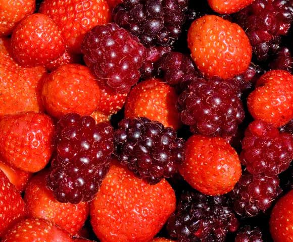 December Mixed Berries