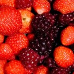 Strawberries and Loganberries, December, 2010