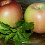 Snow apples and mint, February, 2010