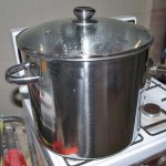 "Simmering dye pot, lid ""on""."