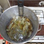 Eucalyptus leaves simmering in pot